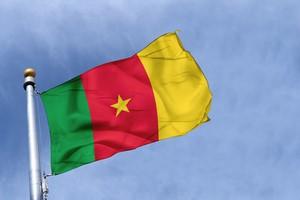 Car hire Cameroon
